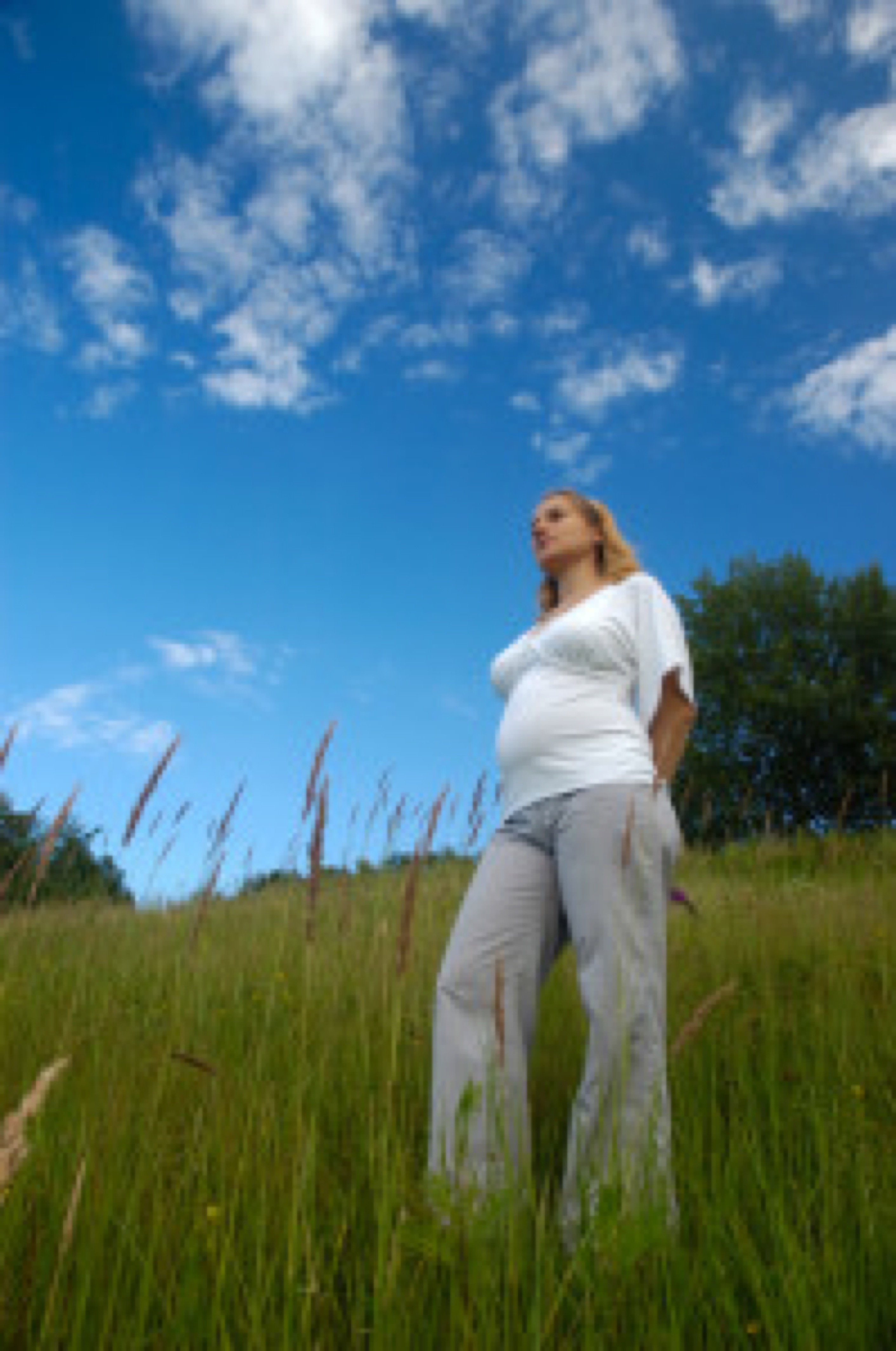 Pregnancy on the color nature, series