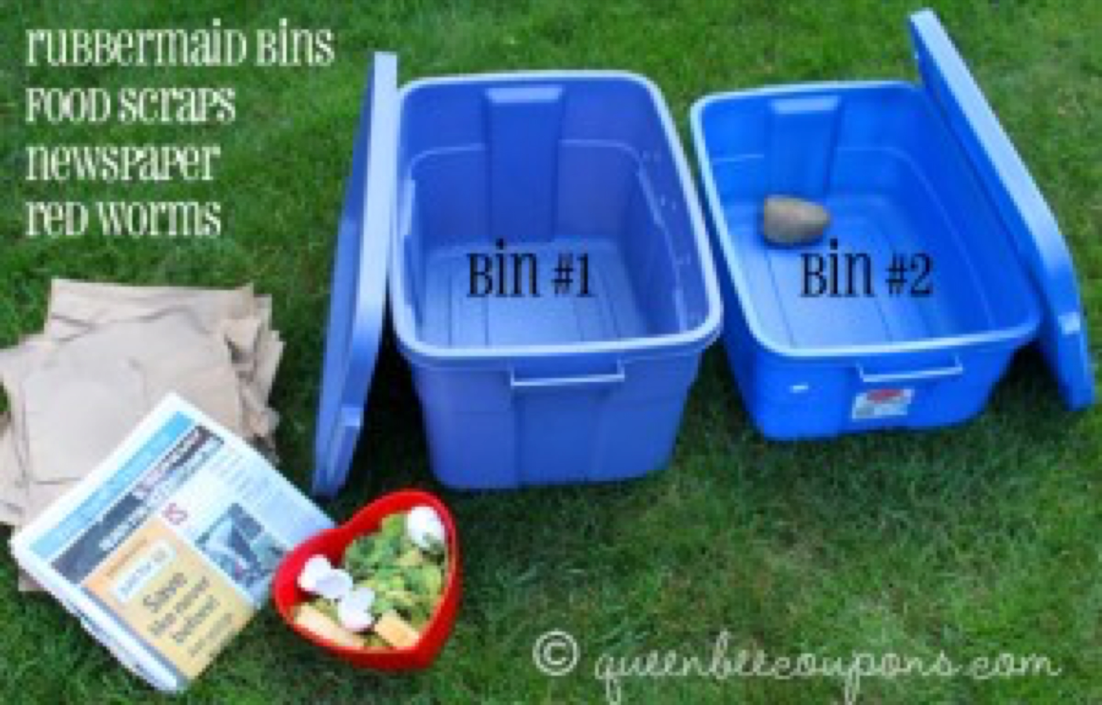 supplies-for-worm-bins