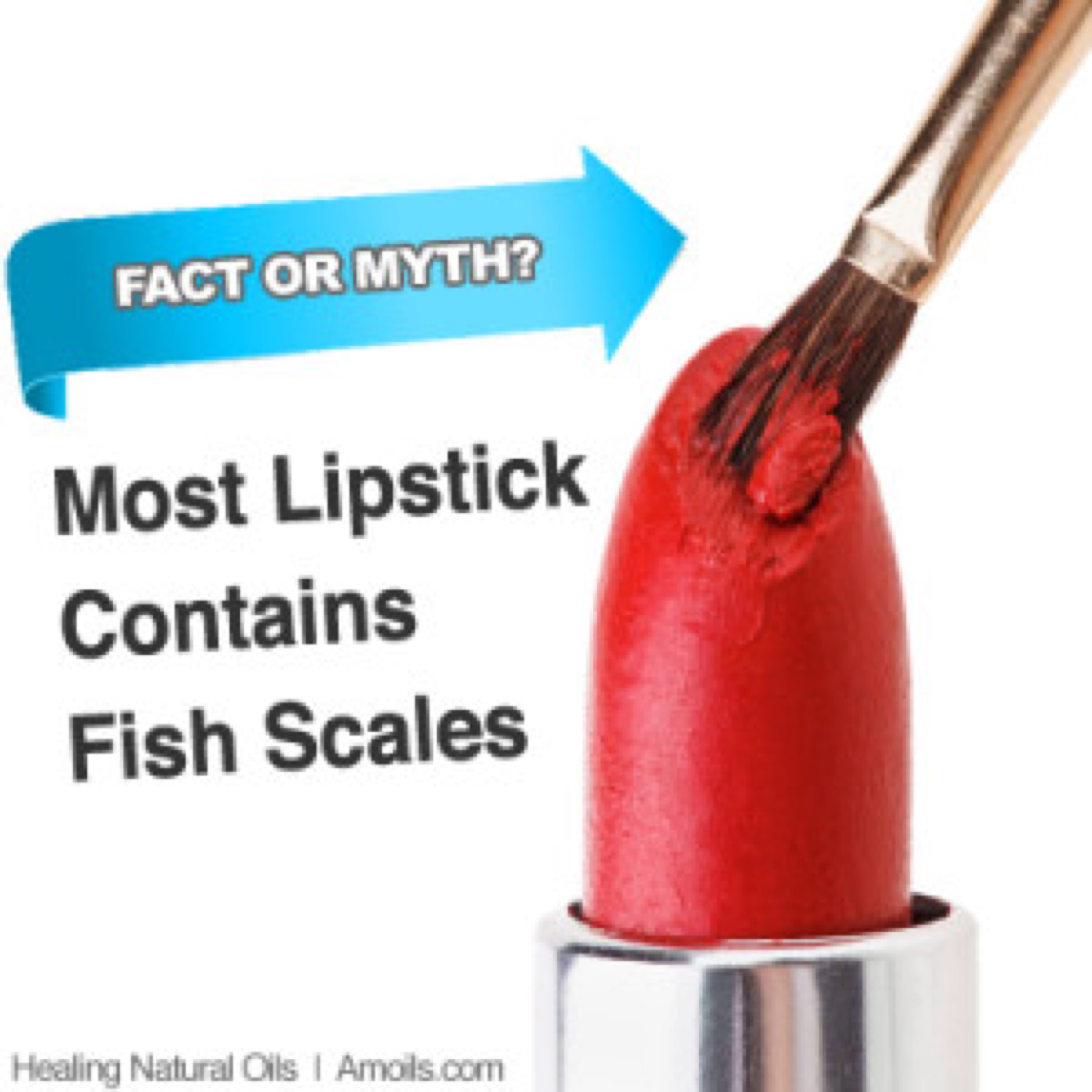 lipstick-infographic-amoils