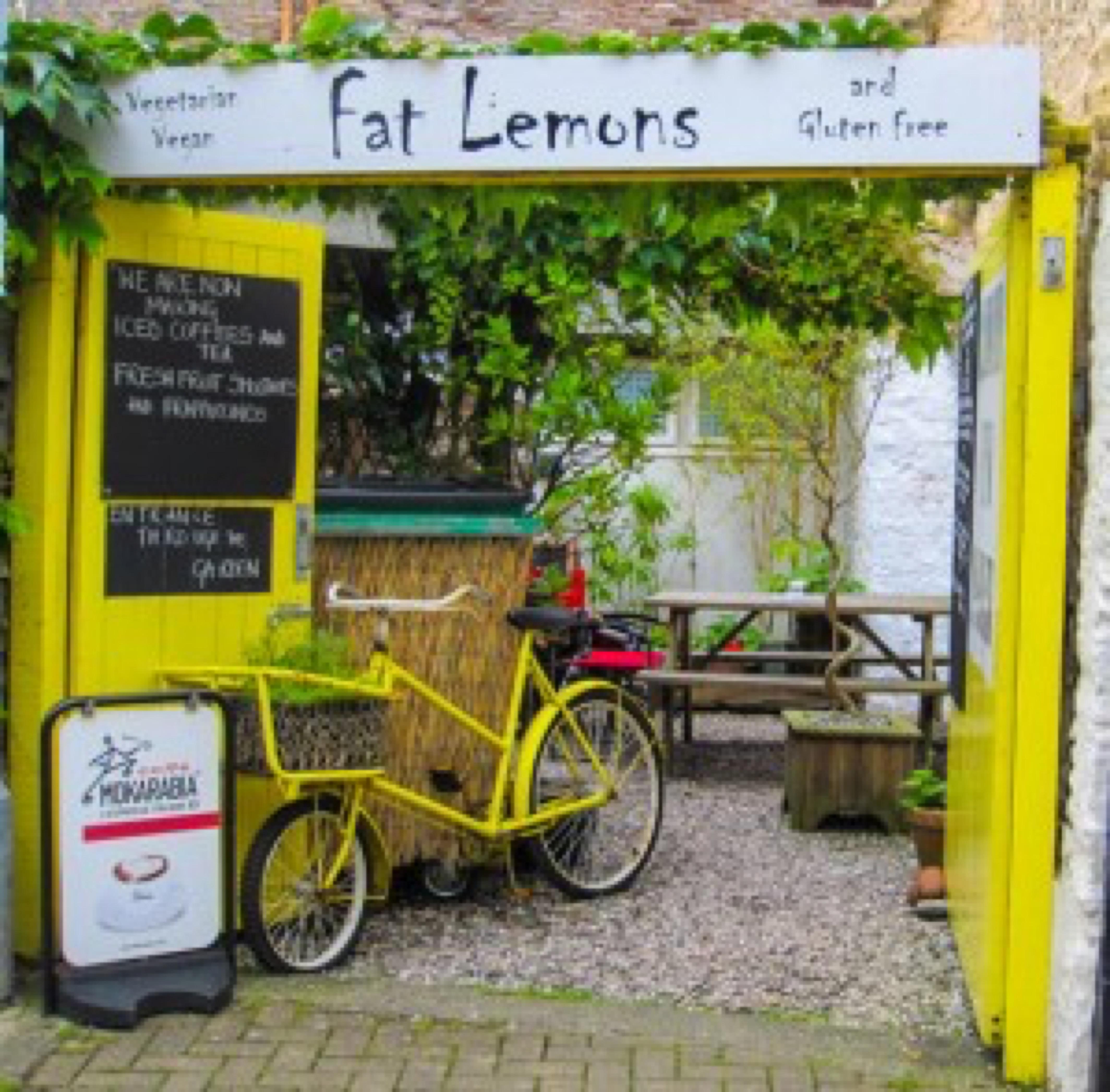 Lemons (photo Jane Chitty)