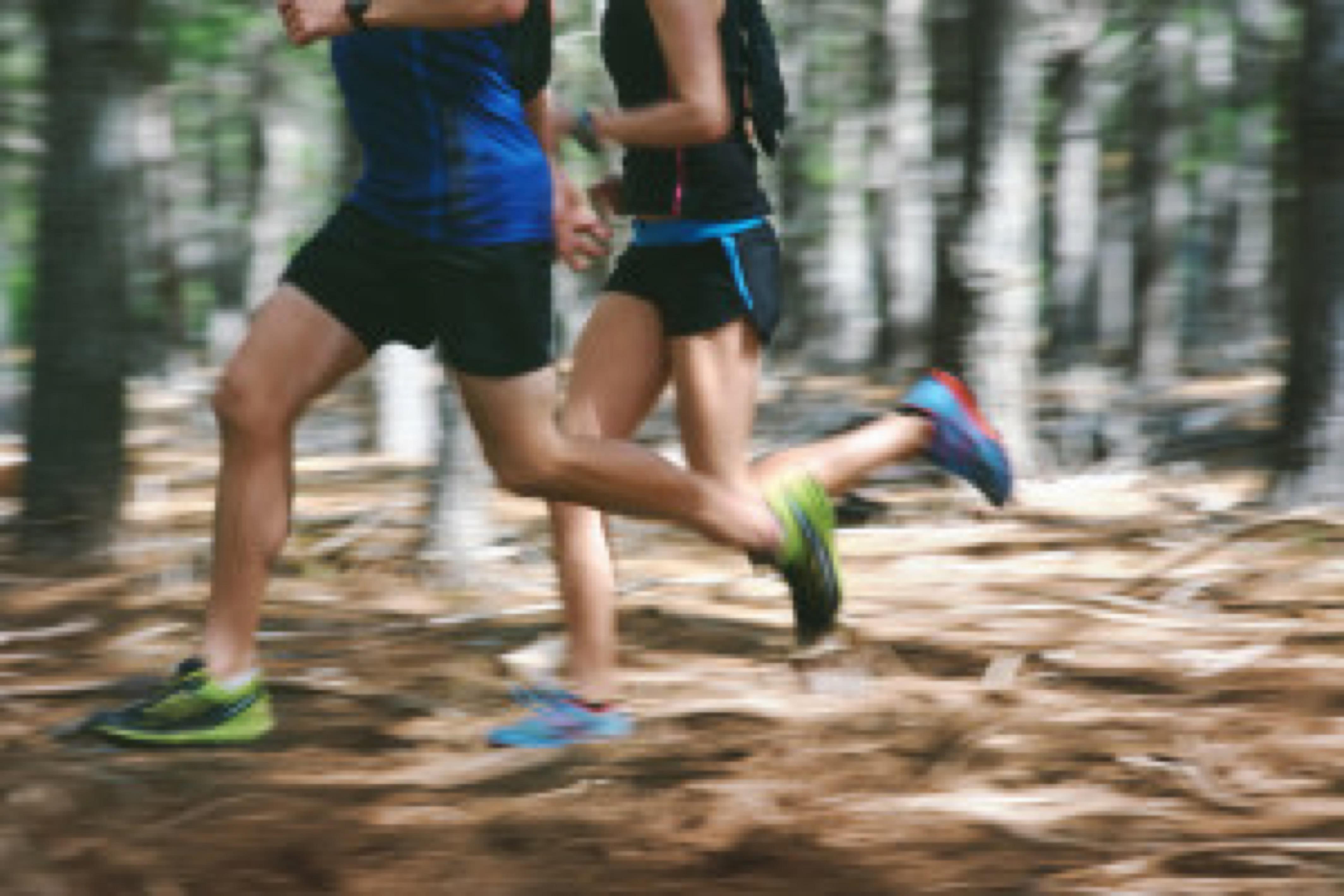 motion blur forest trail run