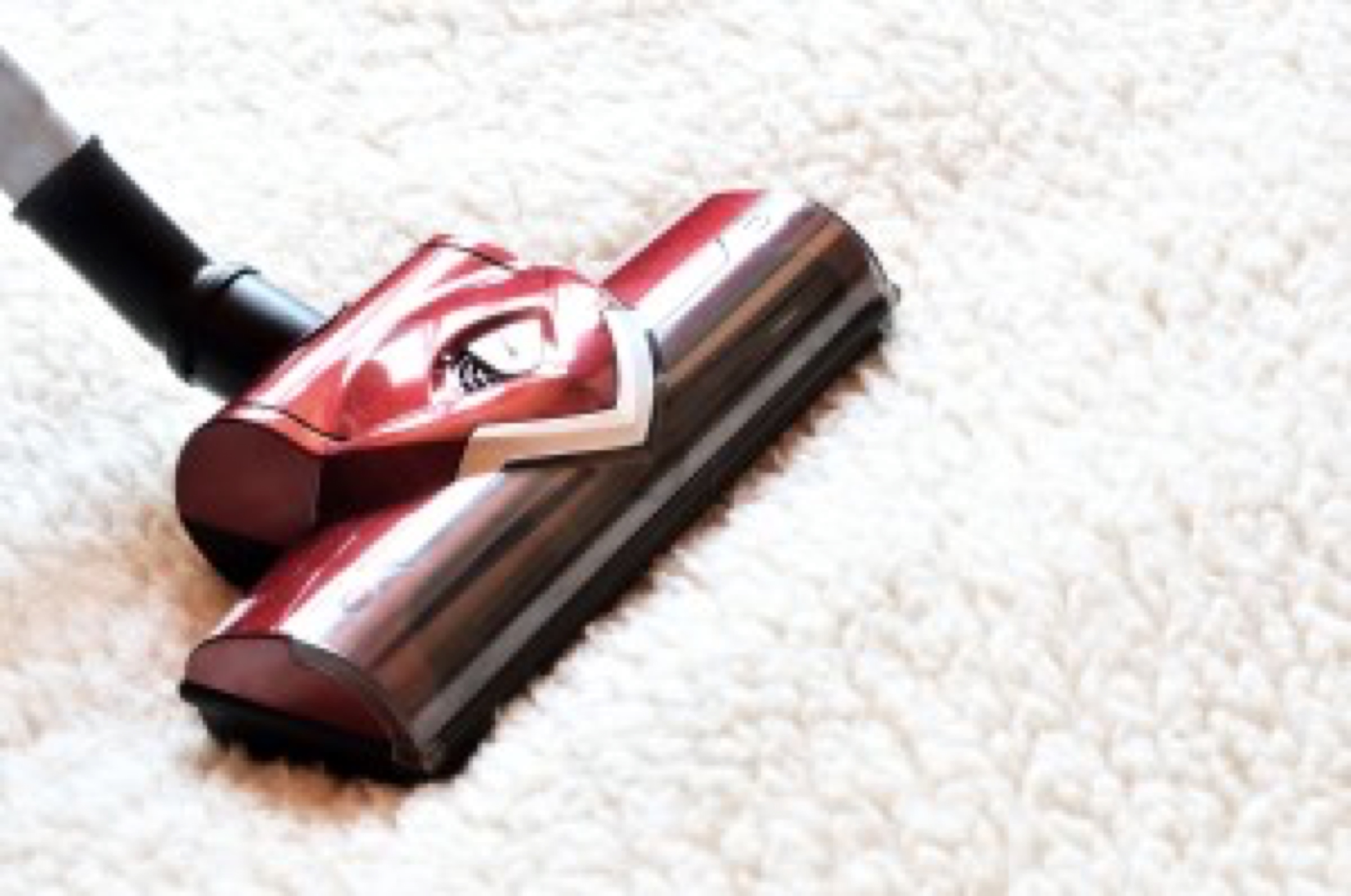 Vacuum cleaner. Close up of the head of a modern hoover being used while vacuuming a woollen furry carpet.